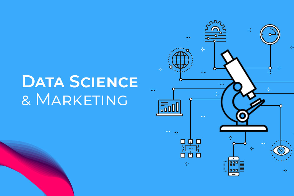 Who is a Data Scientist and why should businesses process data